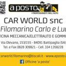 CAR WORLD