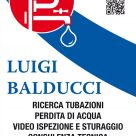 LUIGI BALDUCCI