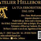ATELIER HELLEBORO