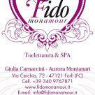 FIDO MON AMOUR