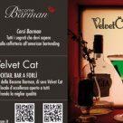 VELVET CAT - BECOME BARMAN