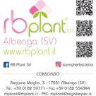 RB PLANT