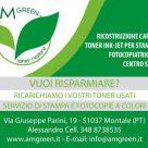AM GREEN TONER RESTORE