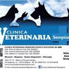 CLINICA VETERINARIA SEMPIONE