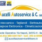 AUCELLI AUTOSERVICE & C.
