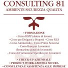 CONSULTING 81