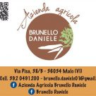 BRUNELLO DANIELE