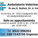 AMBULATORIO VETERINARIO