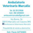 AMBULATORIO VETERINARIO MARCALLO