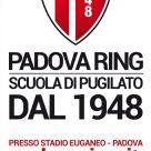 PADOVA RING