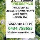 MORENO TARDIVO TREESTYLE