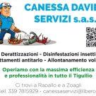 CANESSA DAVIDE SERVIZI