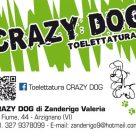 CRAZY DOG