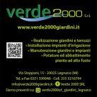 VERDE 2000