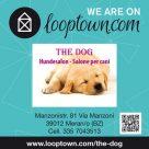 LOOPTOWN.COM