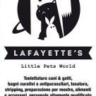LAFAYETTE'S