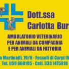 DOTT.SSA CARLOTTA BURSI