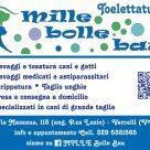 MILLE BOLLE BAU