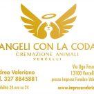 ANGELI CON LA CODA