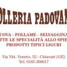 POLLERIA PADOVANA
