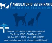 AMBULATORIO VETERINARIO DOTT.SSA MARIA LAURA BORSINI