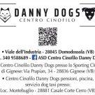 DANNY DOGS