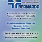 CLINICA VETERINARIA SAN BERNARDO