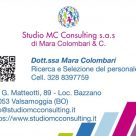 STUDIO MC CONSULTING