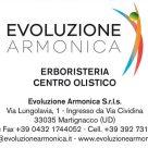 EVOLUZIONE ARMONICA