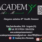 ACADEMY ARTE E MOVIMENTO