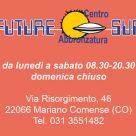 FUTURE SUN