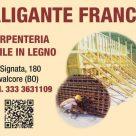 ALIGANTE FRANCO