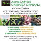 AZIENDA AGRICOLA CARRARO DAMIANO