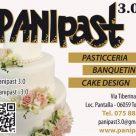 PANIPAST 3.0