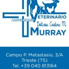 AMBULATORIO VETERINARIO DOTT.SSA CRISTINA M. MURRAY
