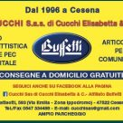 BUFFETTI - CUCCHI