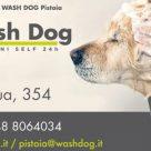 WASH DOG