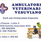 AMBULATORIO VETERINARIO VESUVIANO