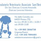 AMBULATORIO VETERINARIO ASSOCIATO SANT'ANTONIO