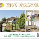 NIDO GIRASOLE