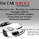 NEW CAR SERVICE