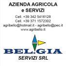 AGRIBELLO AZIENDA AGRICOLA