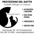 PROTEZIONE DEL GATTO