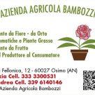 AZIENDA AGRICOLA BAMBOZZI