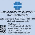 AMBULATORIO VETERINARIO DOTT. GALMARINI