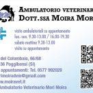 AMBULATORIO VETERINARIO DOTT.SSA MOIRA MORI