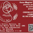 FORNO MAGISTRI 3.1 M.I.