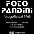 FOTO PANDINI