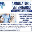 AMBULATORIO VETERINARIO DOTT. BERNARDO CIERVO