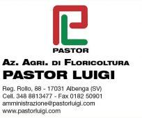 PASTOR LUIGI